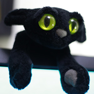 黒猫のぬいぐるみをもらいました。